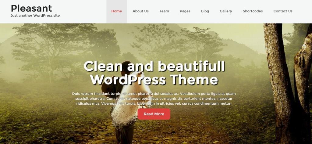 Pleasant Free WordPress Themes