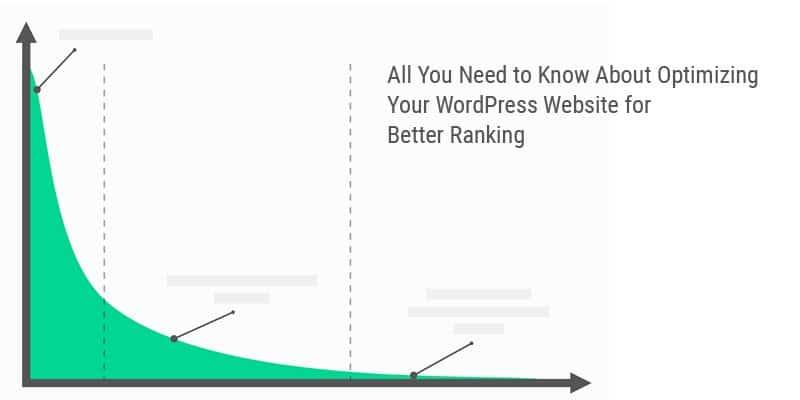 Optimizing Your WordPress Website