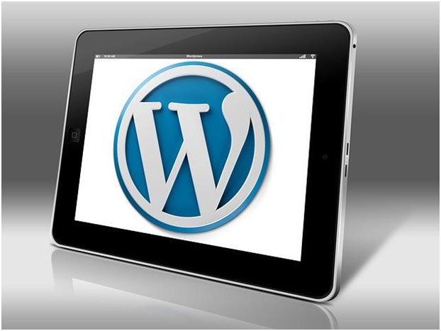 Why is WordPress Free? What are the hidden costs? What is the catch? 2