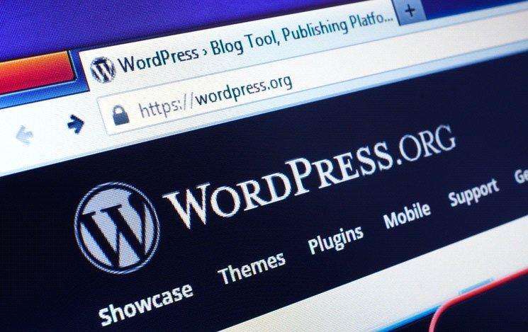 Most Popular Brands Using WordPress