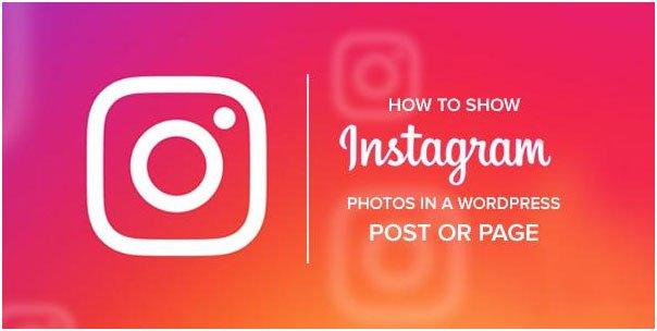 Show Instagram Photos in a WordPress Post