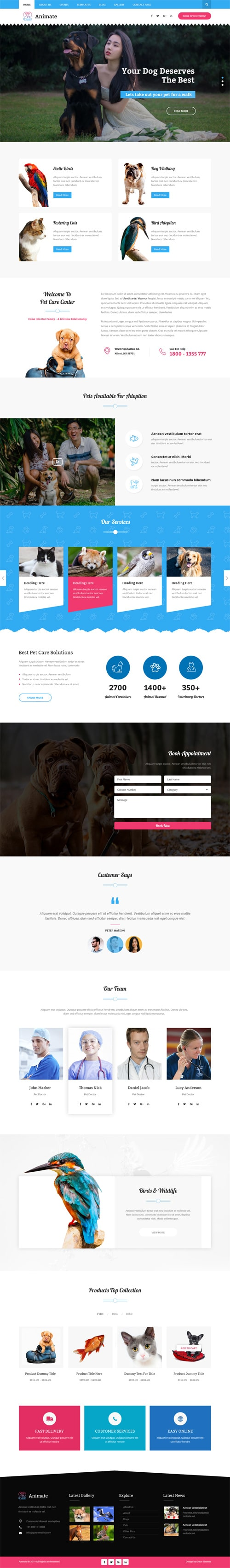 Responsive Best WordPress Themes by GraceThemes