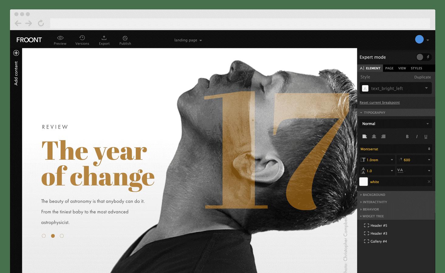 Elegant WordPress Ecommerce Themes