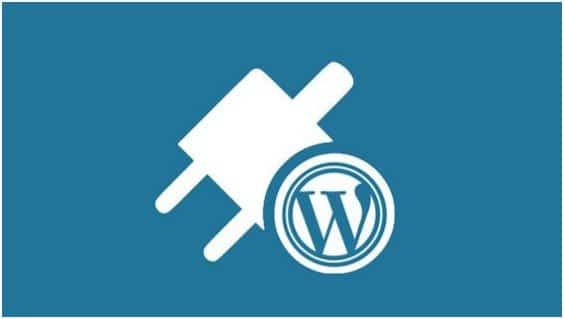 WordPress CMS is recognized all over the globe