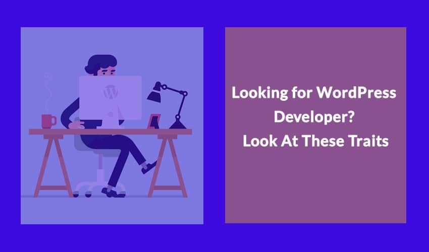 Looking for WordPress Developer