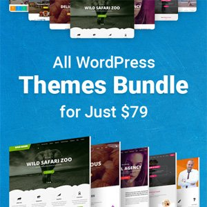 WordPress Theme Bundle