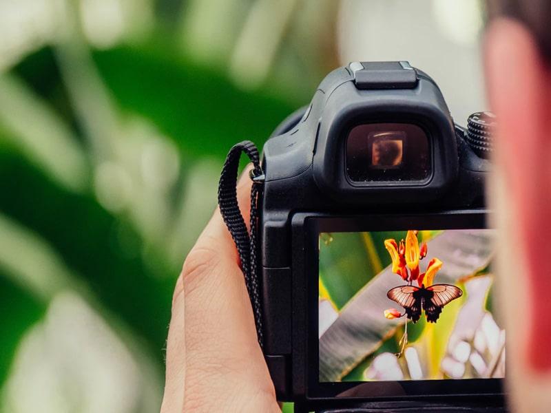 Best-Free-Photography-WordPress-Themes-2021