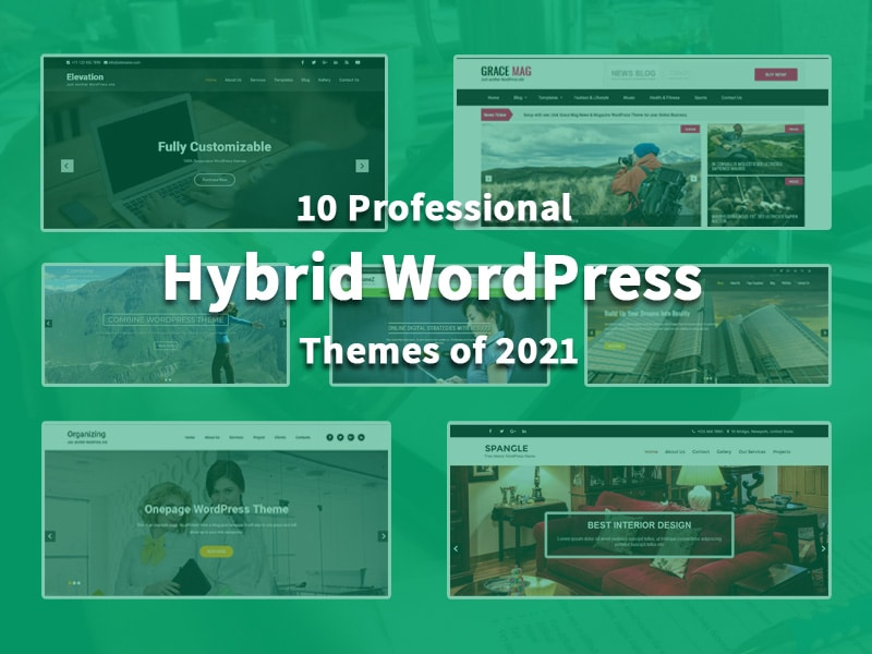 10-Professional-Hybrid-WordPress-Themes-of-2021
